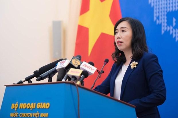 越南将主动采取必要措施保护海外公民 hinh anh 1