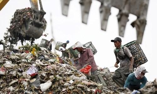 印度尼西亚下决心退回进口的数十个垃圾集装箱 hinh anh 2