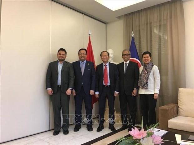 越南圆满完成马德里东盟委员会轮值主席国任期 hinh anh 1