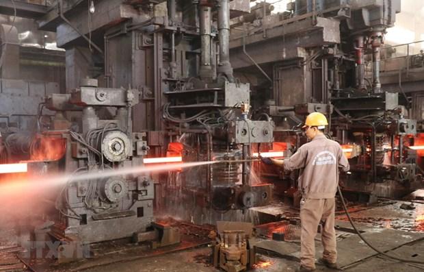 越南将继续与美国配合保护企业的权利 hinh anh 1