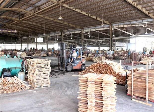 《越南与欧盟自由贸易协定》为越南木材加工业带来可持续发展机会 hinh anh 1