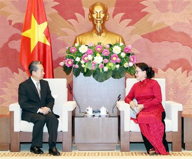 越南国会主席阮氏金银会见中国驻越大使熊波 hinh anh 2