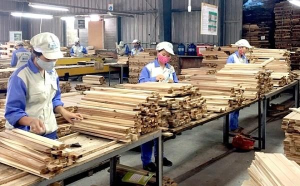 越南林业部门努力实现林产品出口额达110亿美元的目标 hinh anh 1