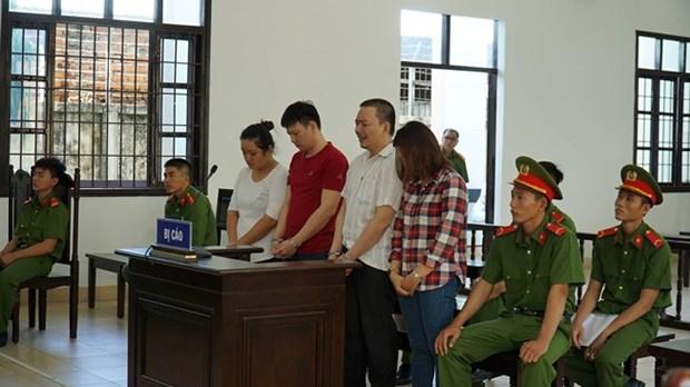 宁顺省开庭审理冒充外国人身份侵占他人财产一案 hinh anh 1