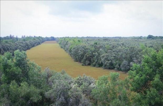 同塔梅生态保护区努力实现可持续发展 hinh anh 1