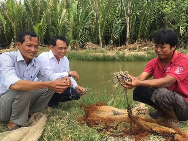 槟椥省集中发展主要水产品 hinh anh 1