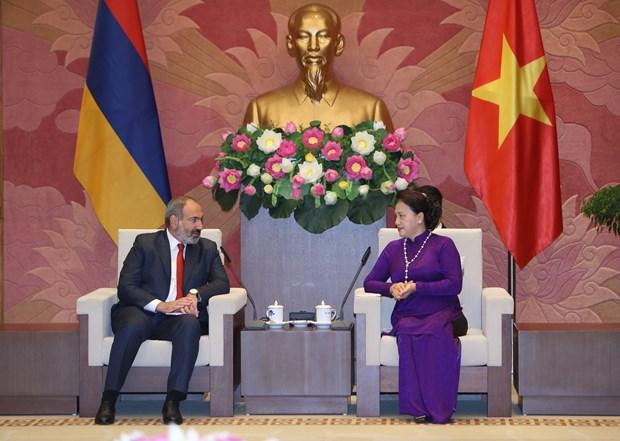 越南国会主席阮氏金银会见亚美尼亚总理帕希尼扬 hinh anh 2