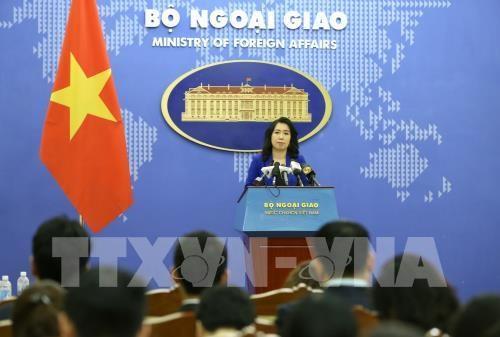 越南外交部发言人:越南要求严格处理韩国丈夫暴打越南妻子一案 hinh anh 1