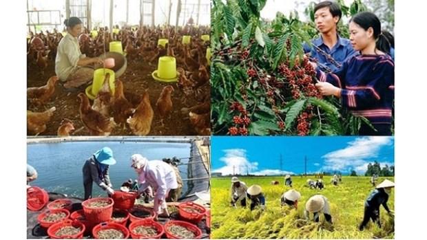 《自贸协定》带来广阔市场: 为越南融入国际经济夯实基石(一) hinh anh 1