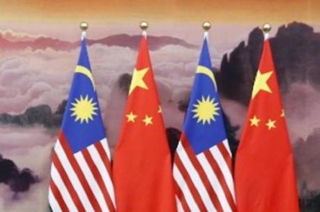 中国与马来西亚加强双边关系 hinh anh 2