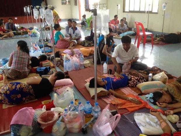 老挝发布全国登革热疫情警报 hinh anh 1