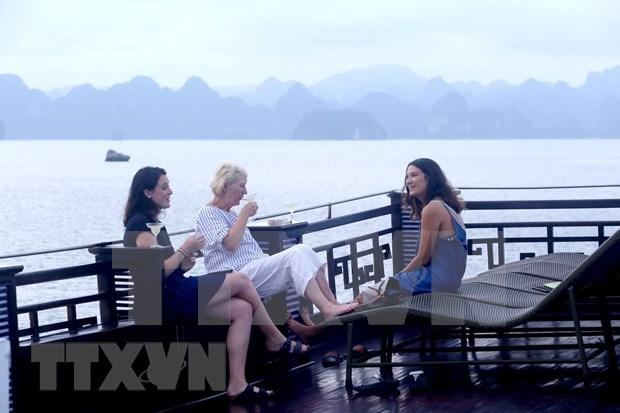 今年上半年越南接待国际游客多达850万人次 hinh anh 1