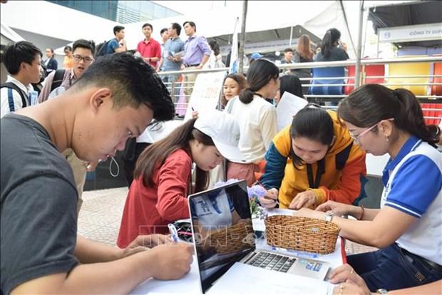 2019年第二季度越南劳务市场的就业人数约为5460万人 hinh anh 1