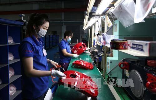 今年上半年胡志明市制造业生产指数增长7% hinh anh 1