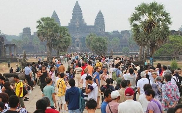 2019年赴柬埔寨旅游的中国游客人数大增 hinh anh 2