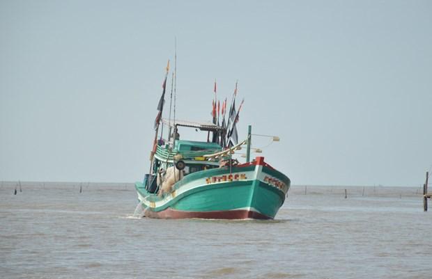 越南广义省李山岛县渔民成功救助在海上遇险的32名外国渔民 hinh anh 1