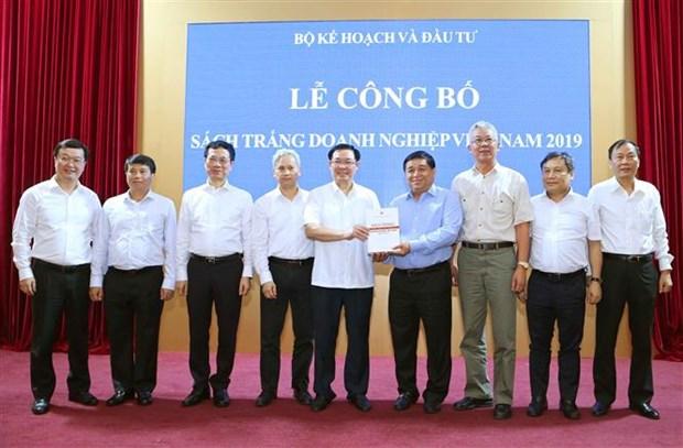 越南首次发布《企业白皮书》 hinh anh 1