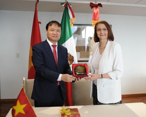 越南与墨西哥促进经贸投资合作 hinh anh 2