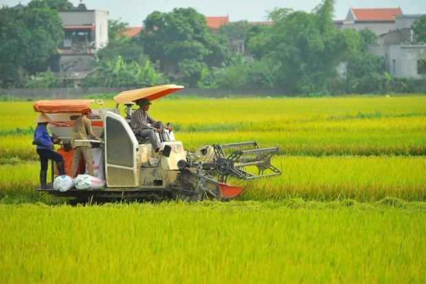 2019年越南经济中期报告:经济增长有望超过国会提出的目标 hinh anh 1