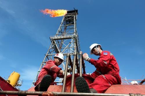 2019年上半年越南国家油气集团超额完成各项财务指标既定计划 hinh anh 1