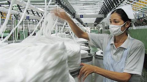 越南是美国棉花产业的重要市场 hinh anh 1
