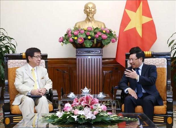 日本将继续协助越南实现快速可持续发展 hinh anh 1