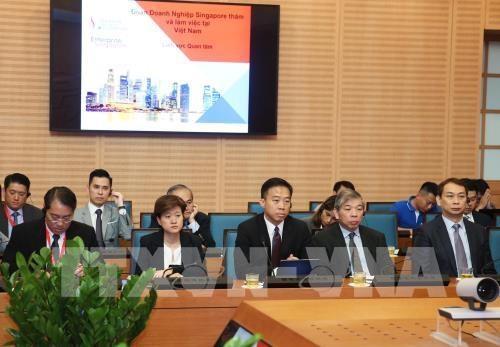 新加坡企业赴河内寻找合作机会 hinh anh 2