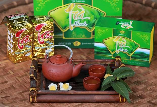 打造驰名品牌 恢复发展传统的球江茶区 hinh anh 3