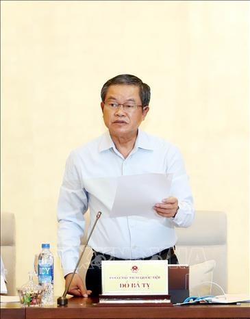 国会讨论《民兵法(修正案)(草案)》和《越南公民出入境法(草案)》 hinh anh 1