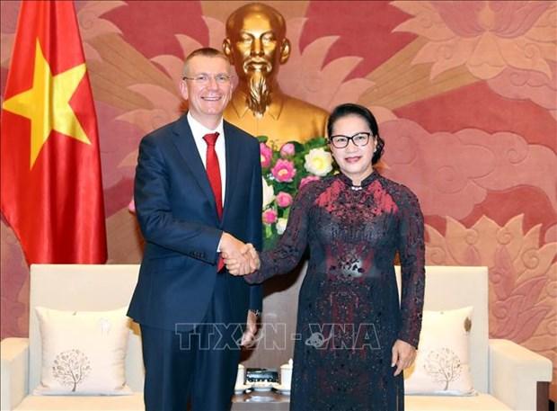 越南国会主席阮氏金银会见拉脱维亚外长林克维奇斯 hinh anh 1