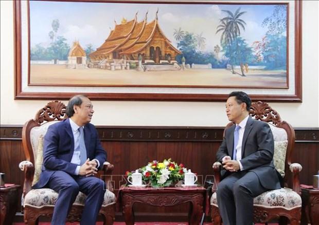 越南与老挝第四次政治磋商举行 hinh anh 1