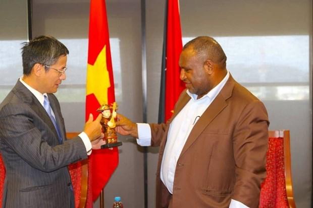 巴布亚新几内亚重视对越友好合作关系 hinh anh 2