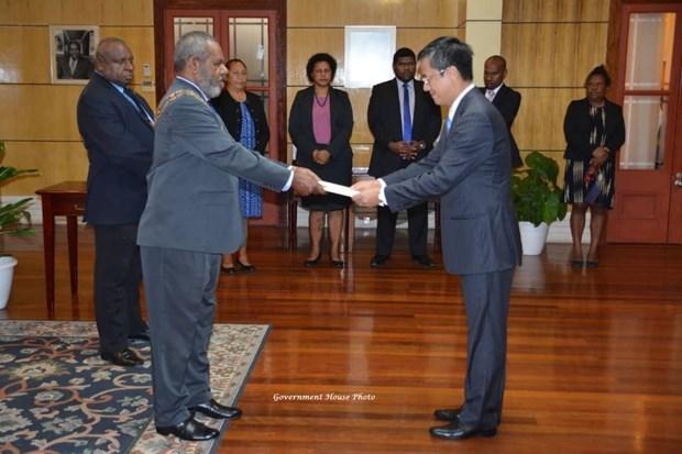 巴布亚新几内亚重视对越友好合作关系 hinh anh 1