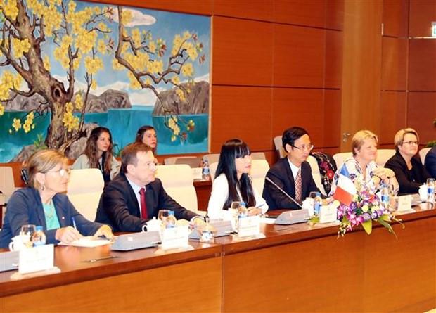 越南与法国国会代表加强合作关系 hinh anh 2
