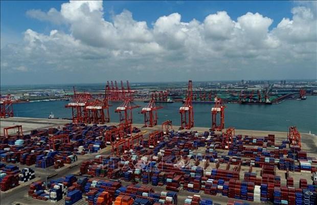 东盟超越美国成为中国第二大贸易伙伴 hinh anh 2