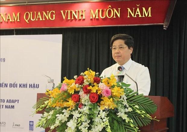 瑞士协助越南将遥感技术应用于水稻种植领域 hinh anh 1