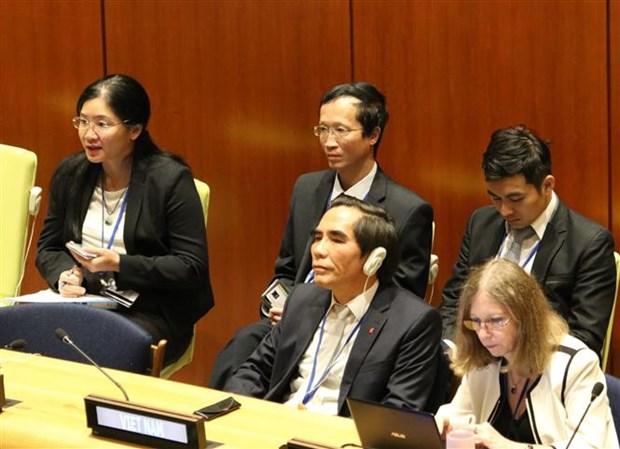 越南在联合国分享实施可持续发展目标的经验 hinh anh 3