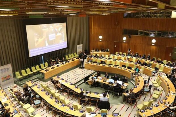 越南在联合国分享实施可持续发展目标的经验 hinh anh 1