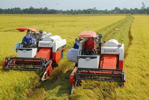 越南颁布决议 鼓励和促进企业对农业进行投资 hinh anh 1