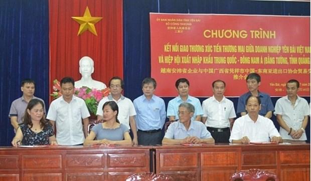 越南安沛省与中国企业签署农林产品销售合作意向书 hinh anh 1