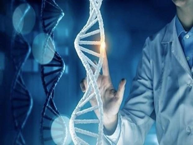 越南人基因组研究项目工程成果正式公布 hinh anh 1