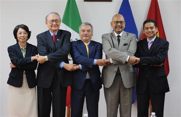 东盟各国高度评价越南在东盟与墨西哥关系中的作用 hinh anh 1