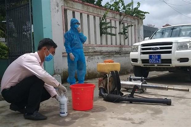 2019年初至今越南登革热病例同比增长两倍 hinh anh 2