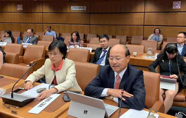 越南积极参加国际贸易活动调整规定建设进程 hinh anh 1