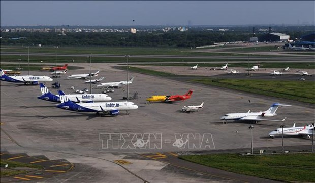 印度GoAir 计划开通直达河内的航线 hinh anh 1