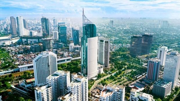 中小微型企业或将成为印尼经济的动力 hinh anh 2