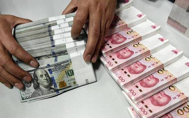 本周初越南盾对美元汇率中间价大幅调升 hinh anh 1