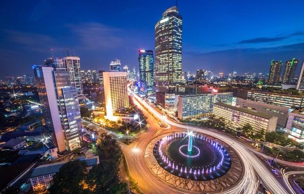 进入印尼外资出现大幅度回升 hinh anh 1