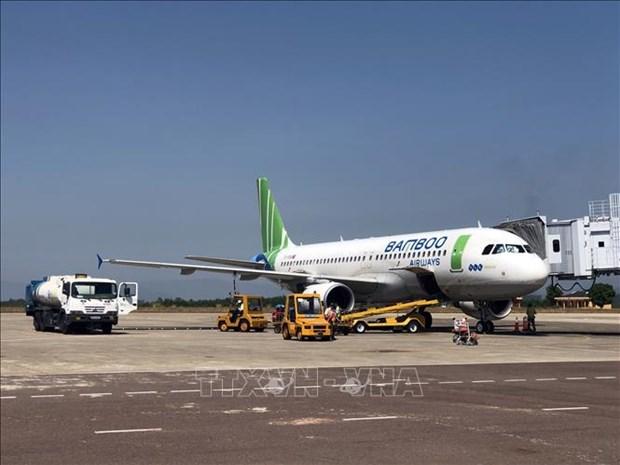 航空在促进越南旅游业发展发挥重要作用 hinh anh 1