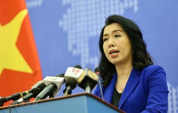 越南外交部发言人:越南海上职能力量开展符合法律规定的措施 hinh anh 1